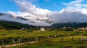 4Bhutan-rice-fields-Paro-valley-shutterstock_347485889